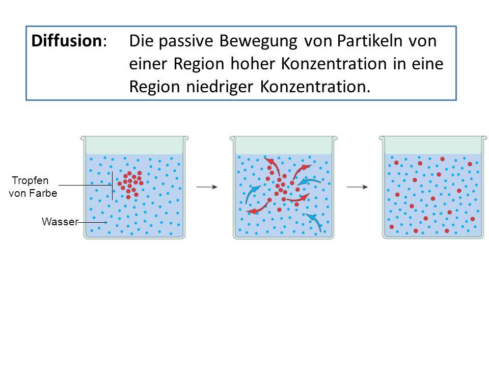 Wasser Tropfen von Farbe Diffusion: Die passive Bewegung von Partikeln von einer Region hoher Konzentration in eine Region niedriger Konzentration.