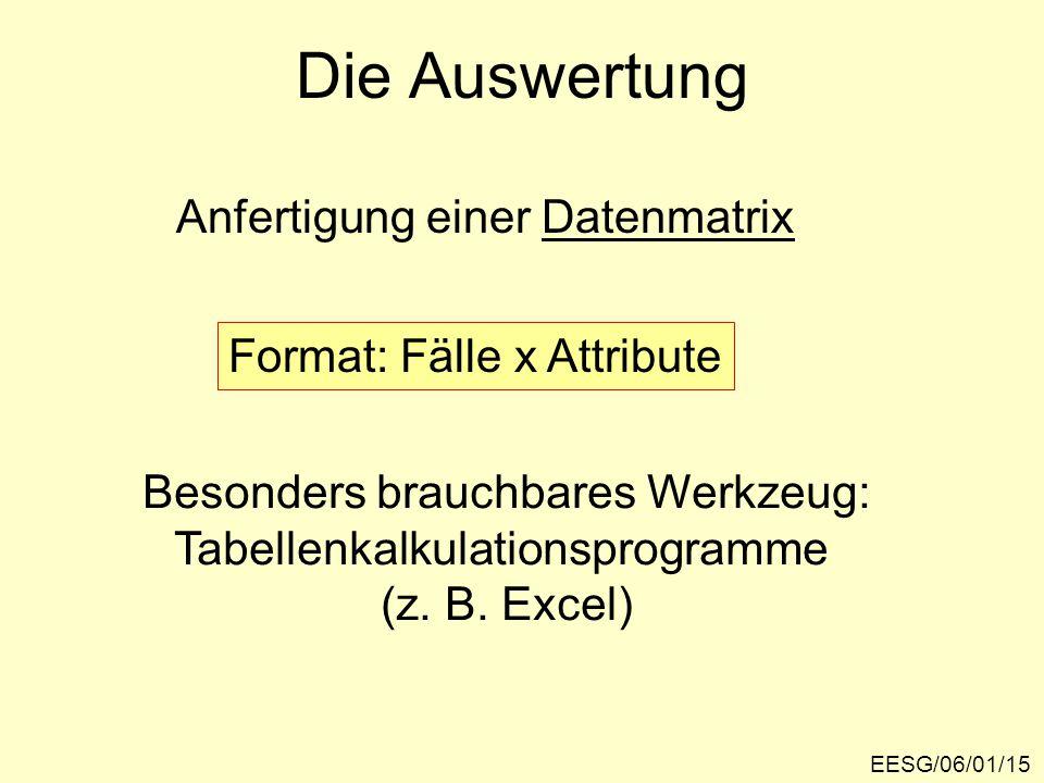 Die Auswertung EESG/06/01/15 Anfertigung einer Datenmatrix Format: Fälle x Attribute Besonders brauchbares Werkzeug: Tabellenkalkulationsprogramme (z.