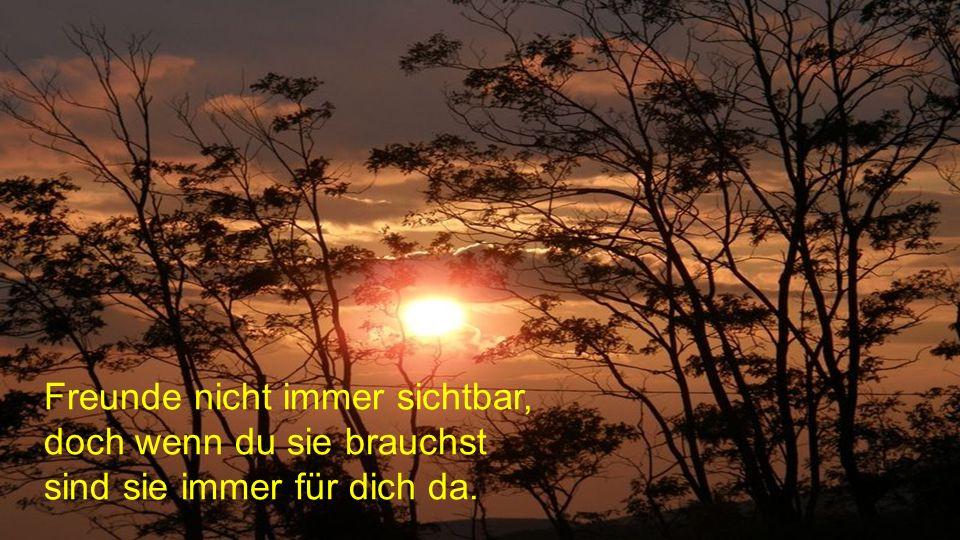 Manche Freunde sind wie Schatten: Scheint die Sonne sind sie immer hinter dir, doch sobald du im Schatten stehst, sind sie verschwunden.