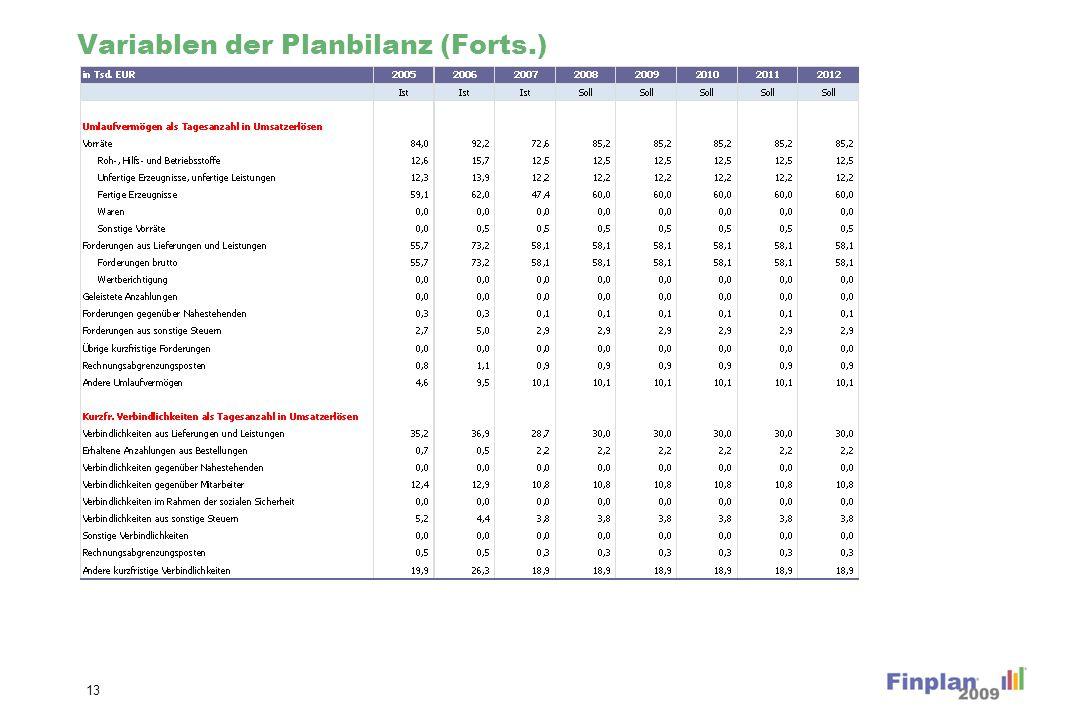 Variablen der Planbilanz (Forts.) 13