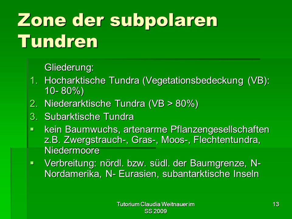 Tutorium Claudia Weitnauer im SS 2009 13 Zone der subpolaren Tundren Gliederung: 1.Hocharktische Tundra (Vegetationsbedeckung (VB): 10- 80%) 2.Niederarktische Tundra (VB > 80%) 3.Subarktische Tundra  kein Baumwuchs, artenarme Pflanzengesellschaften z.B.
