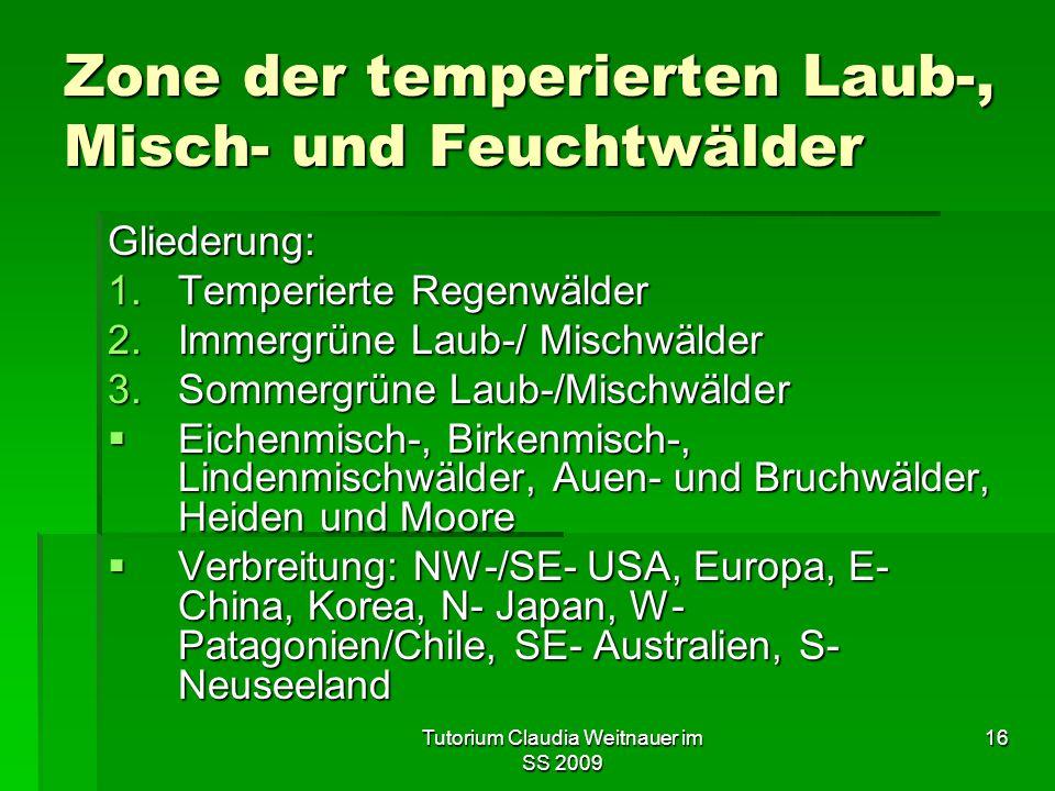 Tutorium Claudia Weitnauer im SS 2009 16 Zone der temperierten Laub-, Misch- und Feuchtwälder Gliederung: 1.Temperierte Regenwälder 2.Immergrüne Laub-/ Mischwälder 3.Sommergrüne Laub-/Mischwälder  Eichenmisch-, Birkenmisch-, Lindenmischwälder, Auen- und Bruchwälder, Heiden und Moore  Verbreitung: NW-/SE- USA, Europa, E- China, Korea, N- Japan, W- Patagonien/Chile, SE- Australien, S- Neuseeland