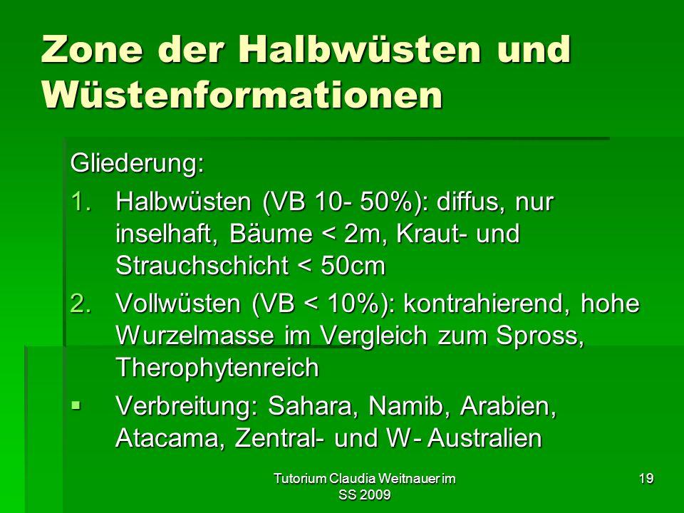 Tutorium Claudia Weitnauer im SS 2009 19 Zone der Halbwüsten und Wüstenformationen Gliederung: 1.Halbwüsten (VB 10- 50%): diffus, nur inselhaft, Bäume < 2m, Kraut- und Strauchschicht < 50cm 2.Vollwüsten (VB < 10%): kontrahierend, hohe Wurzelmasse im Vergleich zum Spross, Therophytenreich  Verbreitung: Sahara, Namib, Arabien, Atacama, Zentral- und W- Australien