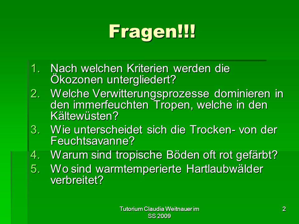 Tutorium Claudia Weitnauer im SS 2009 2 Fragen!!.