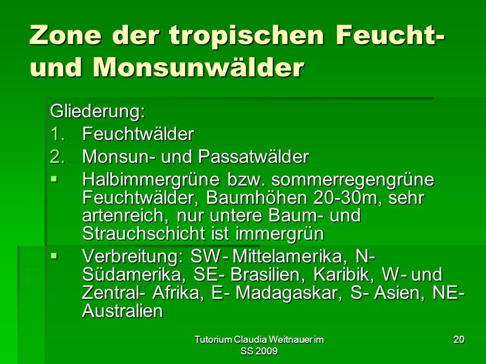 Tutorium Claudia Weitnauer im SS 2009 20 Zone der tropischen Feucht- und Monsunwälder Gliederung: 1.Feuchtwälder 2.Monsun- und Passatwälder  Halbimmergrüne bzw.