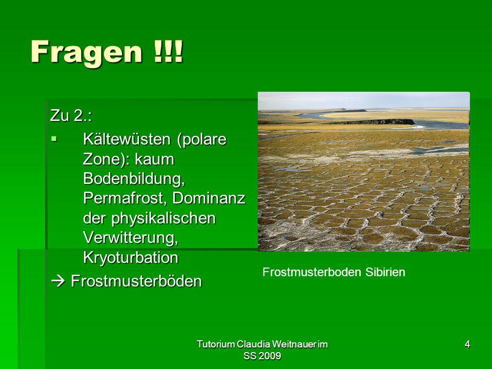 Tutorium Claudia Weitnauer im SS 2009 4 Fragen !!.