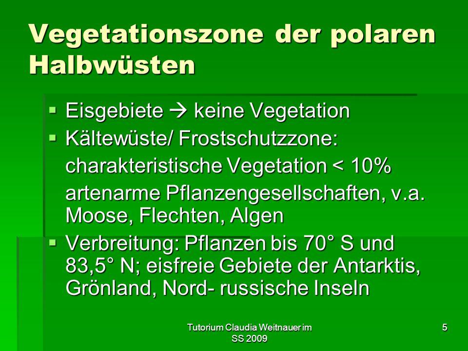 Tutorium Claudia Weitnauer im SS 2009 5 Vegetationszone der polaren Halbwüsten  Eisgebiete  keine Vegetation  Kältewüste/ Frostschutzzone: charakteristische Vegetation < 10% artenarme Pflanzengesellschaften, v.a.
