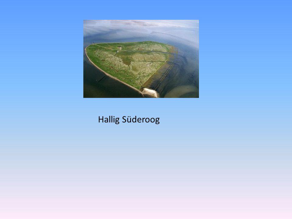 Hallig Süderoog