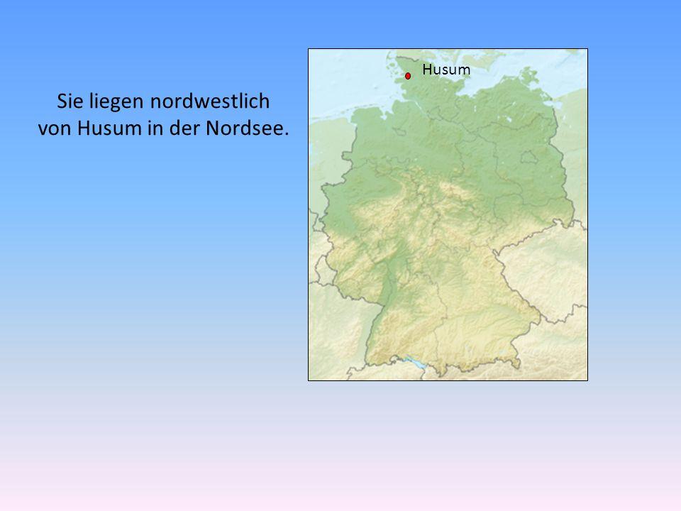 Husum Sie liegen nordwestlich von Husum in der Nordsee.