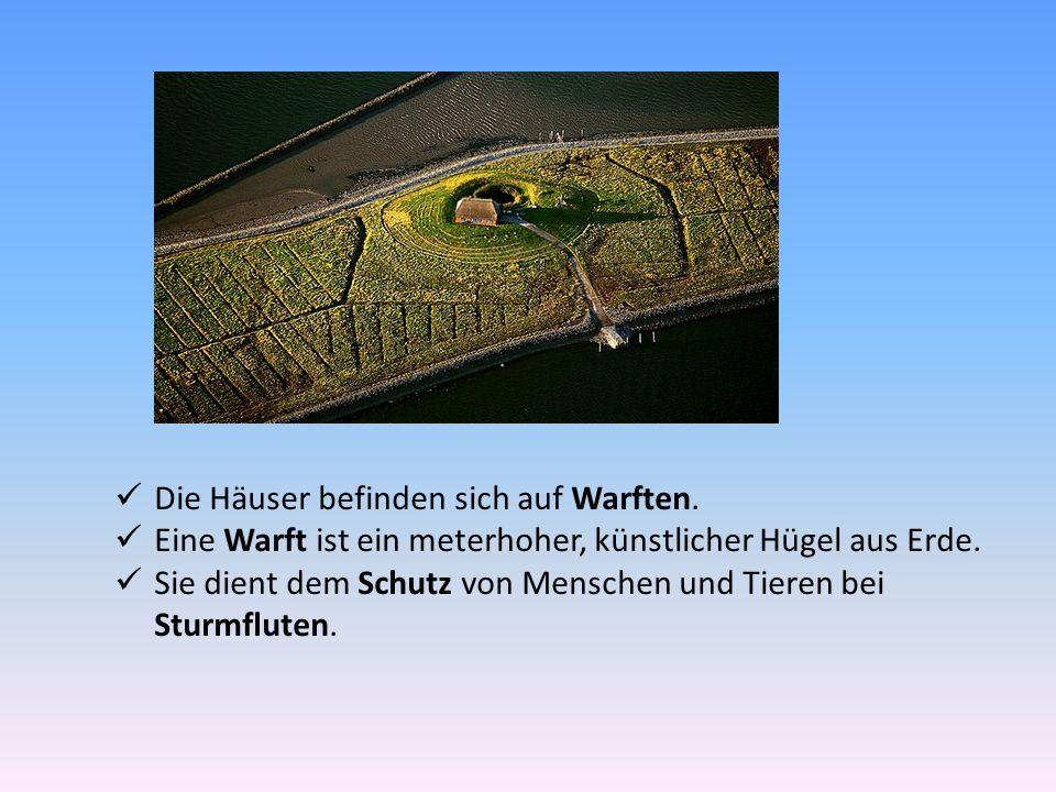 Die Häuser befinden sich auf Warften. Eine Warft ist ein meterhoher, künstlicher Hügel aus Erde. Sie dient dem Schutz von Menschen und Tieren bei Stur