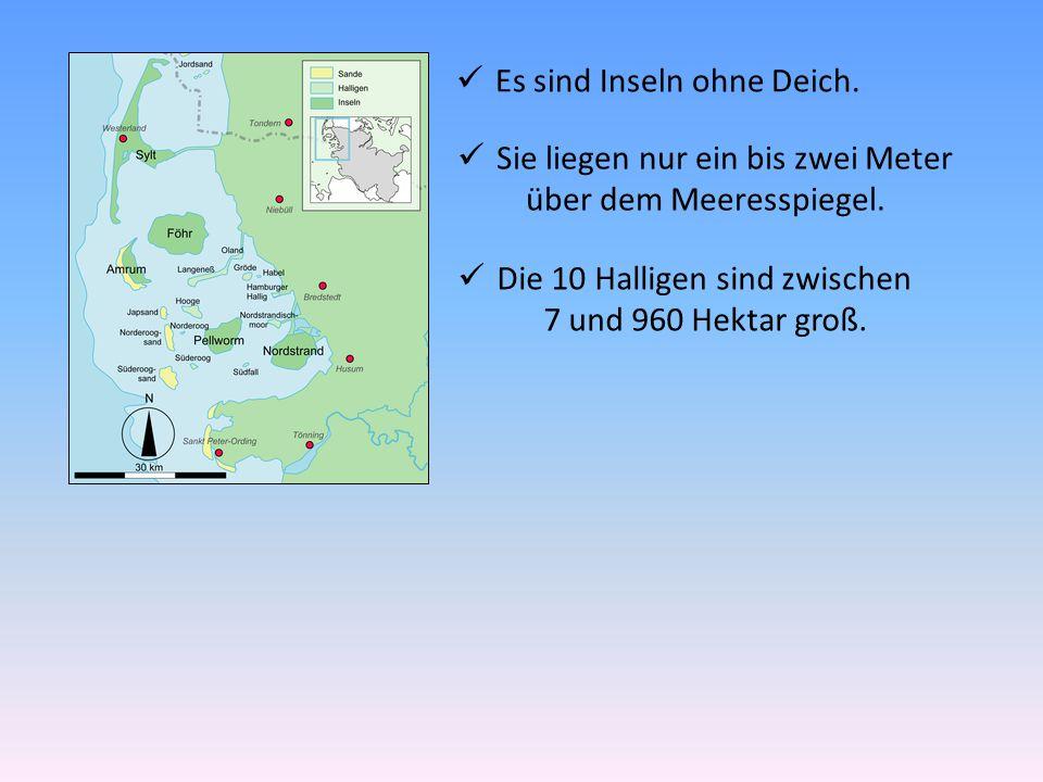 Es sind Inseln ohne Deich. Sie liegen nur ein bis zwei Meter über dem Meeresspiegel. Die 10 Halligen sind zwischen 7 und 960 Hektar groß.