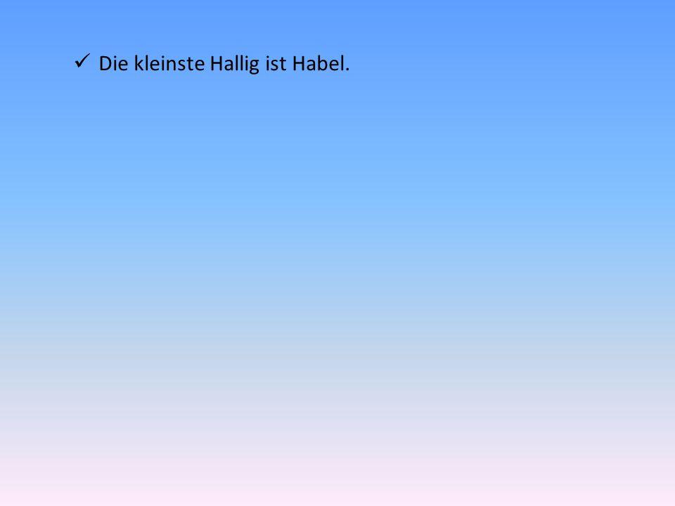 Die Halligen : ein Naturparadies.