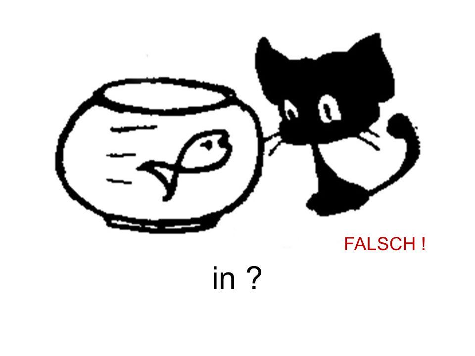 in ? FALSCH !