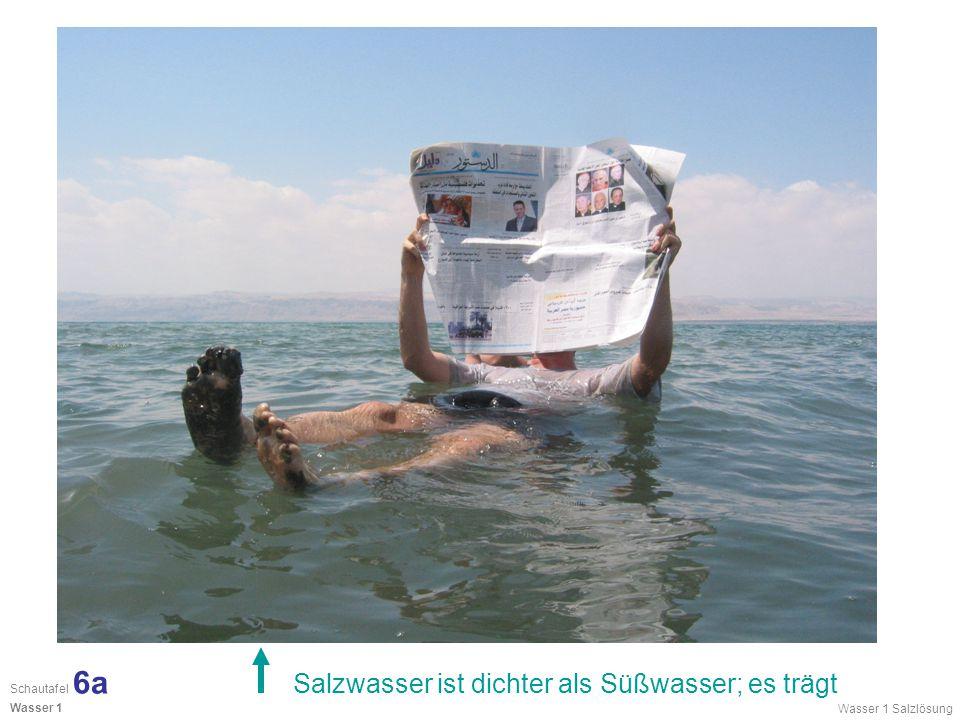 Salzwasser ist dichter als Süßwasser; es trägt Wasser 1 Salzlösung Schautafel 6a Wasser 1