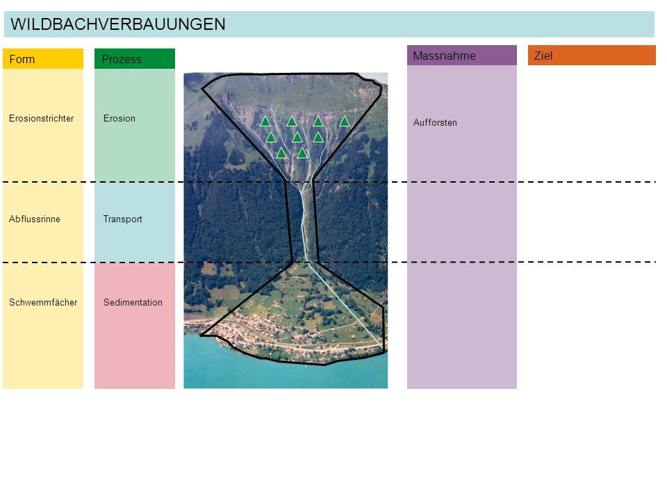 ErosionstrichterErosion Form Prozess AbflussrinneTransport SchwemmfächerSedimentation MassnahmeZiel Aufforsten WILDBACHVERBAUUNGEN