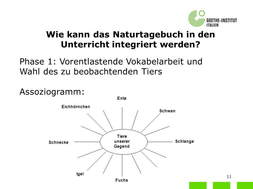 11 Wie kann das Naturtagebuch in den Unterricht integriert werden? Phase 1: Vorentlastende Vokabelarbeit und Wahl des zu beobachtenden Tiers Assoziogr