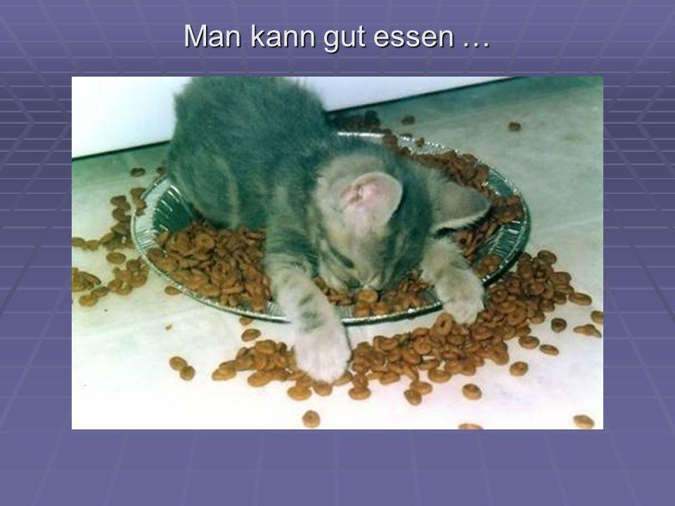 Man kann gut essen …