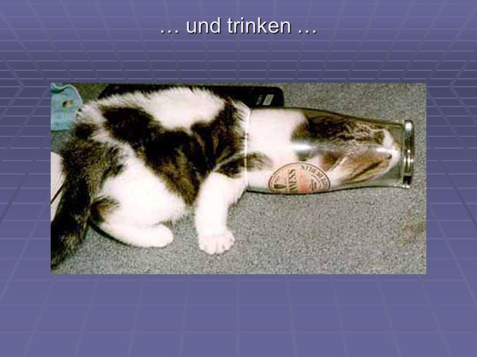 … und trinken …
