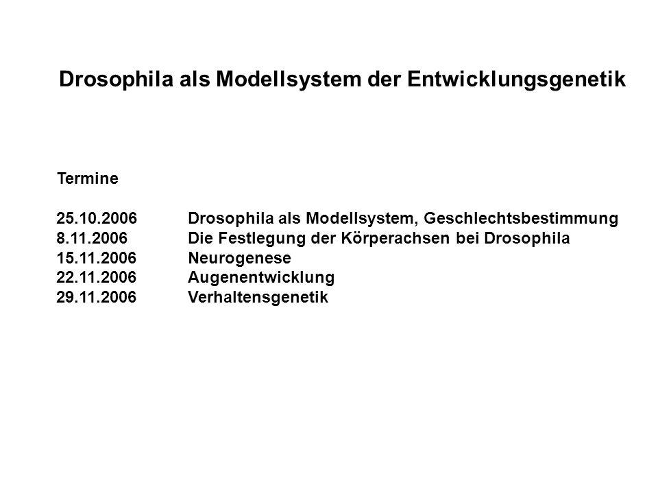 Entwicklungsgenetik Teil I (Fischbach): Drosophila als Modellsystem der Entwicklungsgenetik