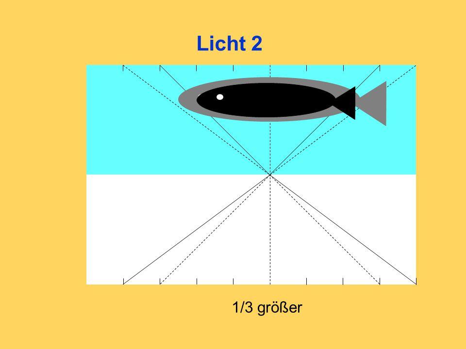 Licht 2 1/3 größer