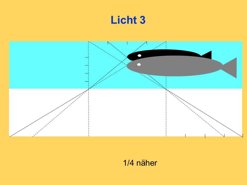 Licht 3 1/4 näher