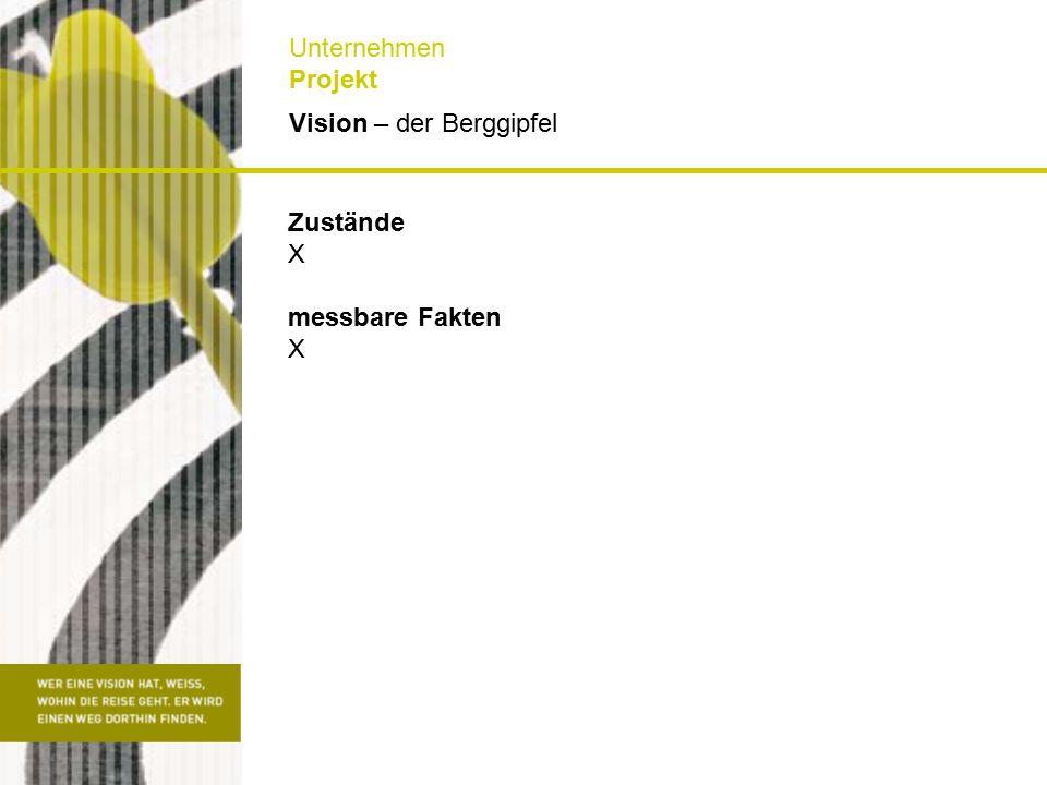 Lieferobjekte X Aktion X Reaktion X Steuerung X Ist – die Ausgangslage Unternehmen Projekt