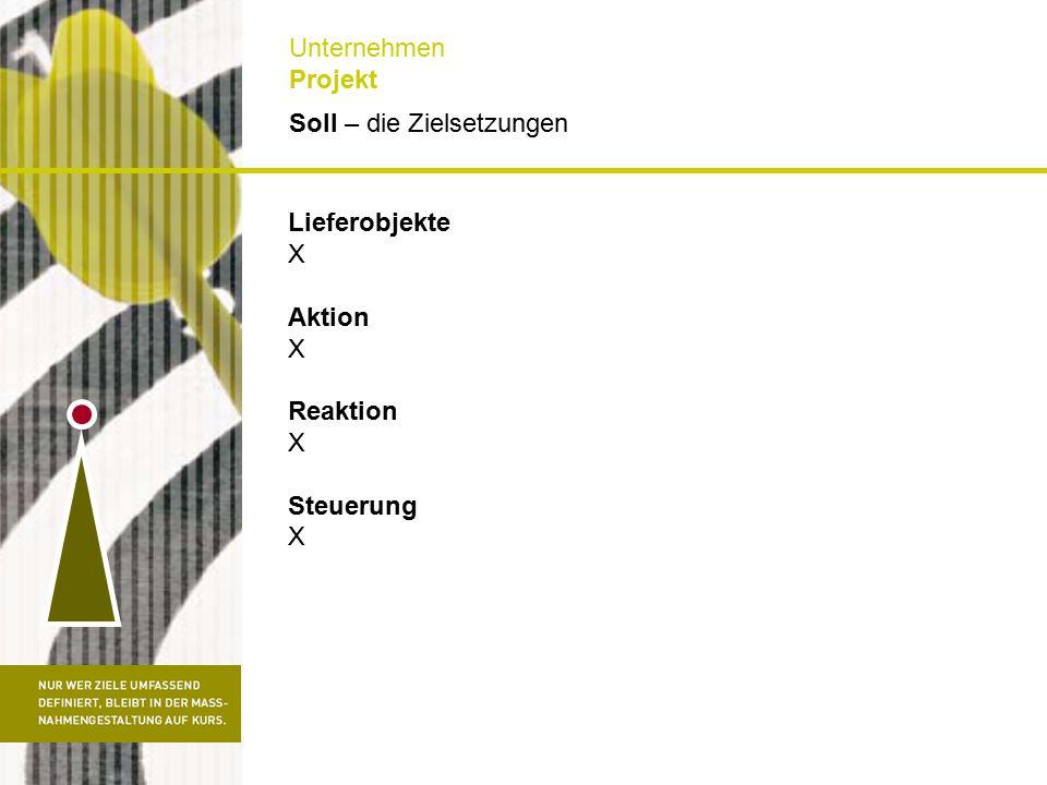 Soll – die Zielsetzungen Unternehmen Projekt Lieferobjekte X Aktion X Reaktion X Steuerung X