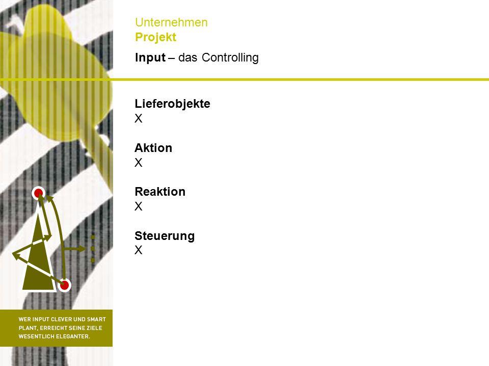 Input – das Controlling Unternehmen Projekt Lieferobjekte X Aktion X Reaktion X Steuerung X