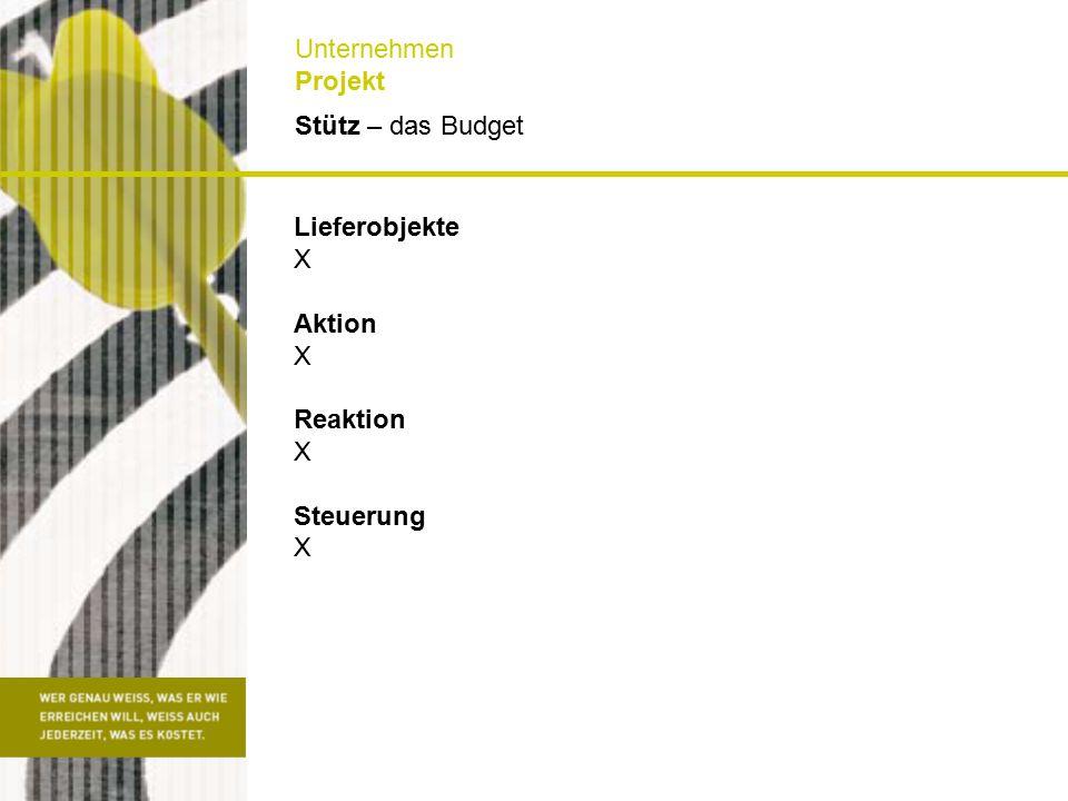 Stütz – das Budget Unternehmen Projekt Lieferobjekte X Aktion X Reaktion X Steuerung X