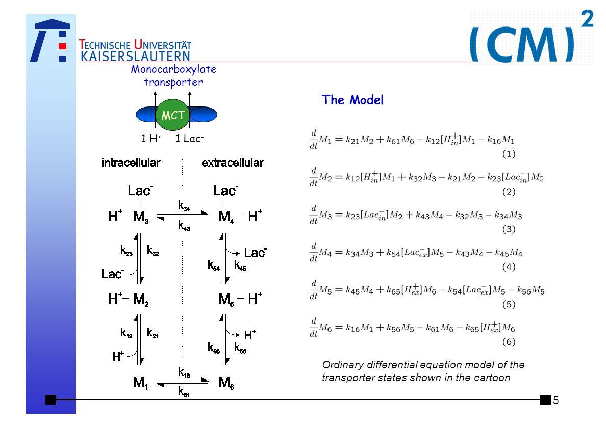 6 Das Landesforschungszentrum (CM)² Center for Mathematical and Computational Modelling Eine Vision:  Das Web of Models Ziele:  Darstellung von (mathematischen) Modellen im Internet  Möglichkeit des  einfachen Auffindens (z.B.