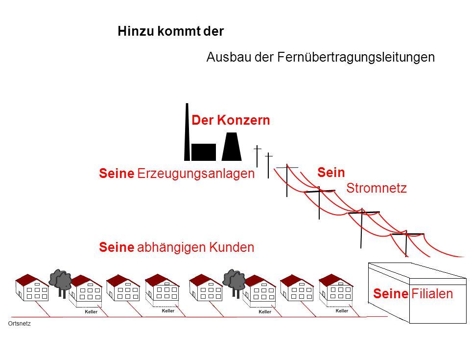 Der Konzern Sein Stromnetz Seine Erzeugungsanlagen Seine abhängigen Kunden Seine Filialen Ausbau der Fernübertragungsleitungen Hinzu kommt der