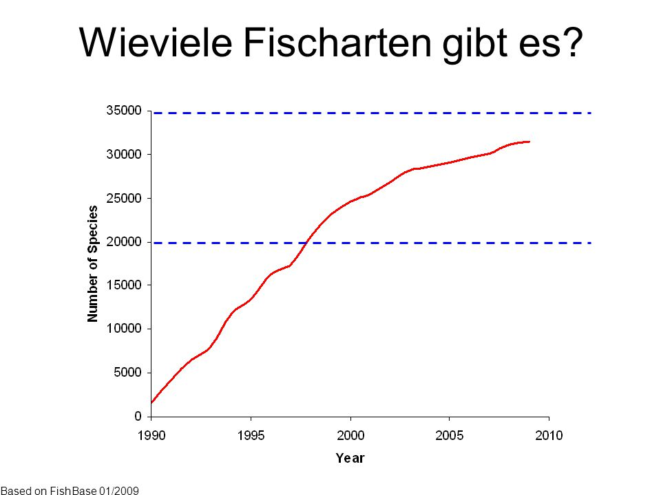 Wieviele Fischarten gibt es? Based on FishBase 01/2009