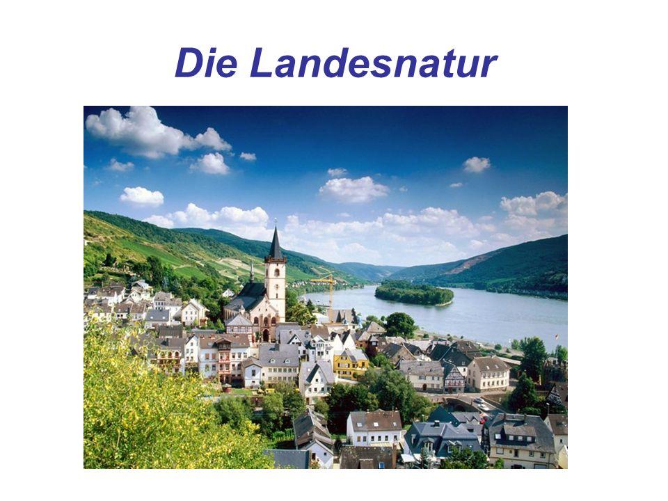 Die OberflächeEin Tiefland – im Norden Gebirge – im Süden Die BergeDie Alpen – im Süden (der höchste Berg ist Zugspitze fast 3000 m hoch) Die FlüsseAlle fliesen zur Nordsee (der Rhein, die Elbe, die Oder, die Ems, die Weser) Nur die Donau fliesst vom Westen nach Osten und mündet ins Schwarze Meer Die Seen (die See) Die Ostsee und die Nordee Die Seen (der See) Der Bodensee – im Süden (bis 250 m tief)