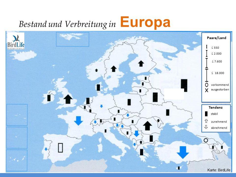  2.000  550  7.600  18.000 ausgestorben vorkommend Paare/Land Tendenz stabil  zunehmend  abnehmend Karte: BirdLife Bestand und Verbreitung in Eu