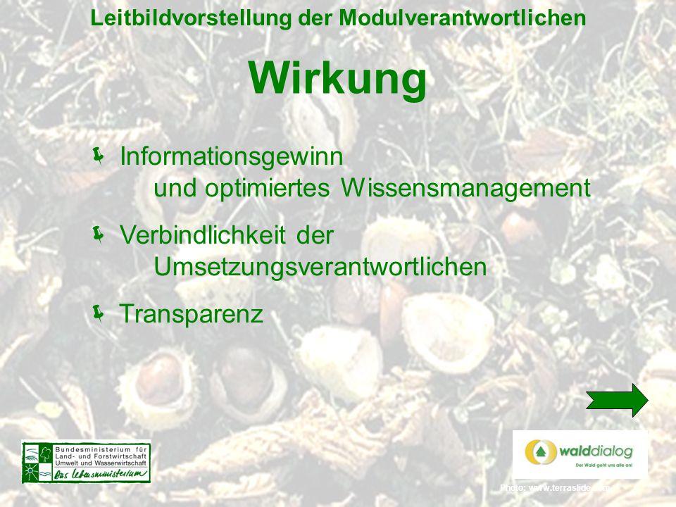 Photo: www.terraslide.com Leitbildvorstellung der Modulverantwortlichen Wirkung  Informationsgewinn und optimiertes Wissensmanagement  Verbindlichke