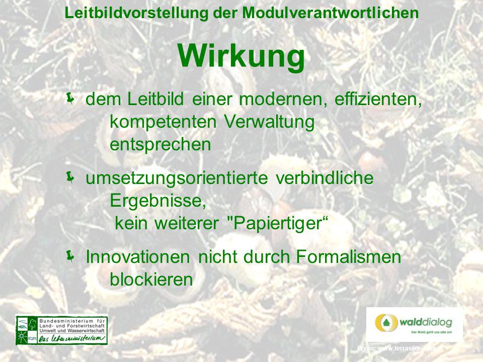 Photo: www.terraslide.com Leitbildvorstellung der Modulverantwortlichen Wirkung  dem Leitbild einer modernen, effizienten, kompetenten Verwaltung ent