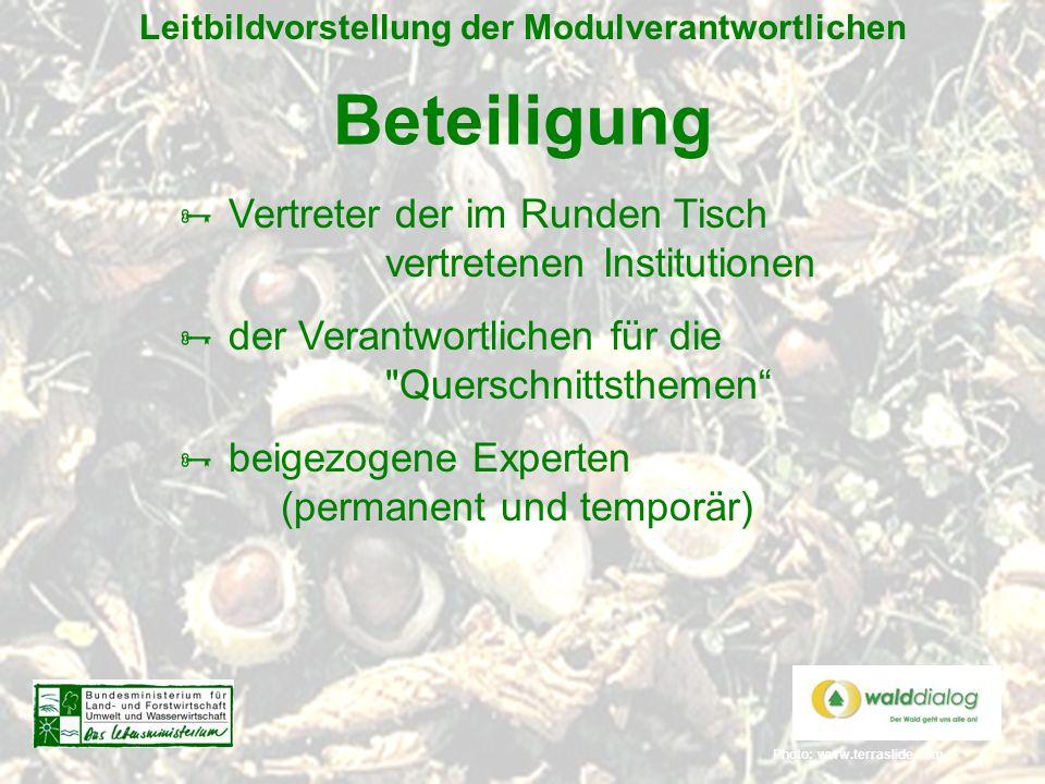 Photo: www.terraslide.com Leitbildvorstellung der Modulverantwortlichen Beteiligung  Vertreter der im Runden Tisch vertretenen Institutionen  der Ve