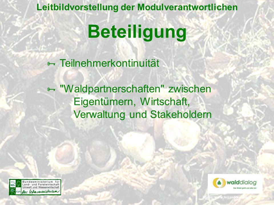 Photo: www.terraslide.com Leitbildvorstellung der Modulverantwortlichen Beteiligung  Teilnehmerkontinuität 