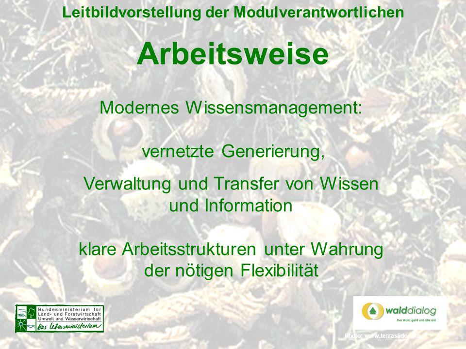 Photo: www.terraslide.com Leitbildvorstellung der Modulverantwortlichen Arbeitsweise Modernes Wissensmanagement: vernetzte Generierung, Verwaltung und