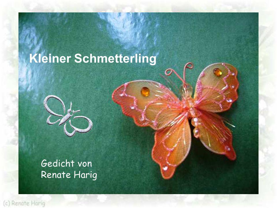 Ich schick' meine Schmetterlinge auf die Reise zu DIR