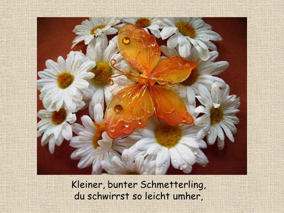 Kleiner Schmetterling Gedicht von Renate Harig