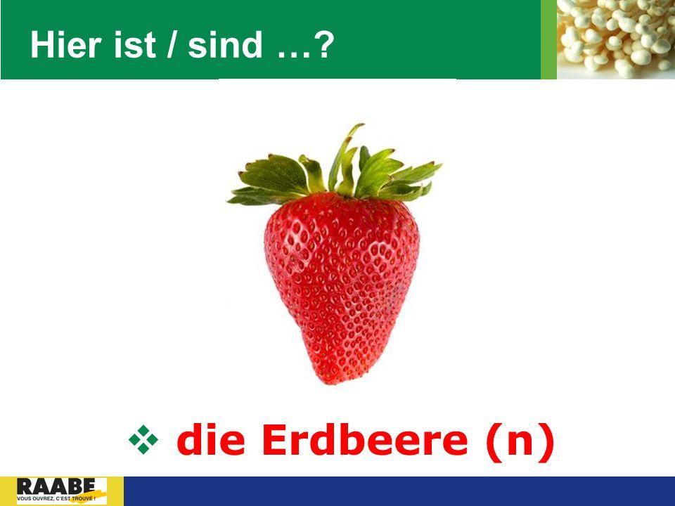 LOGO Hier ist / sind …?  die Erdbeere (n)