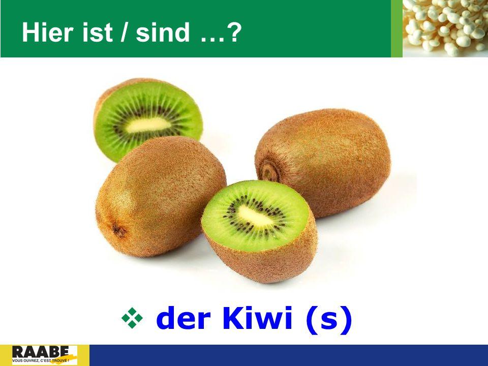 LOGO Hier ist / sind …?  der Kiwi (s)