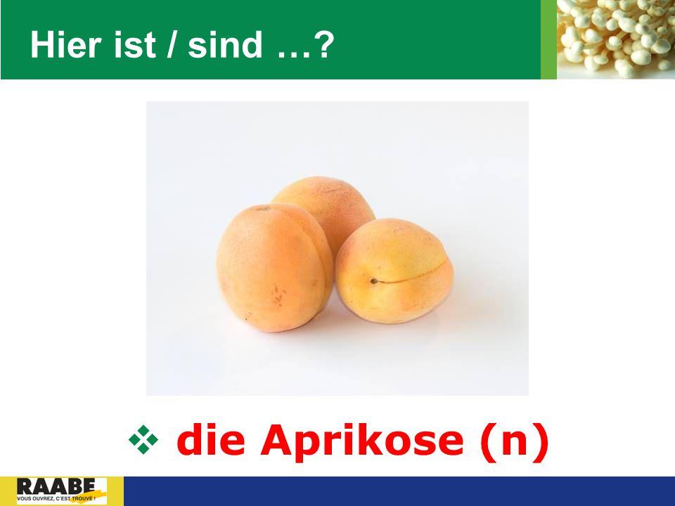 LOGO Hier ist / sind …?  die Aprikose (n)