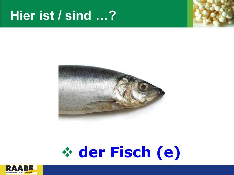 LOGO Hier ist / sind …?  der Fisch (e)