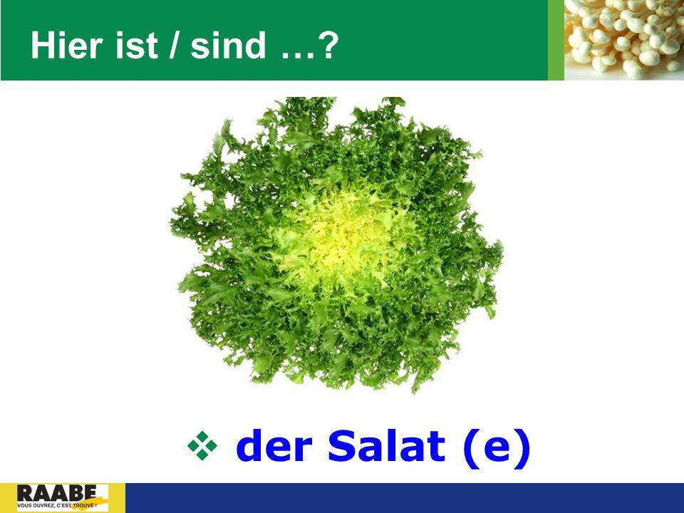 LOGO Hier ist / sind …?  der Salat (e)