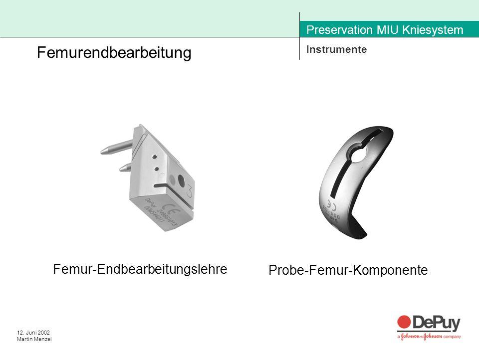 12. Juni 2002 Martin Menzel Preservation MIU Kniesystem Instrumente Femurendbearbeitung Femur - Endbearbeitungslehre Probe-Femur-Komponente