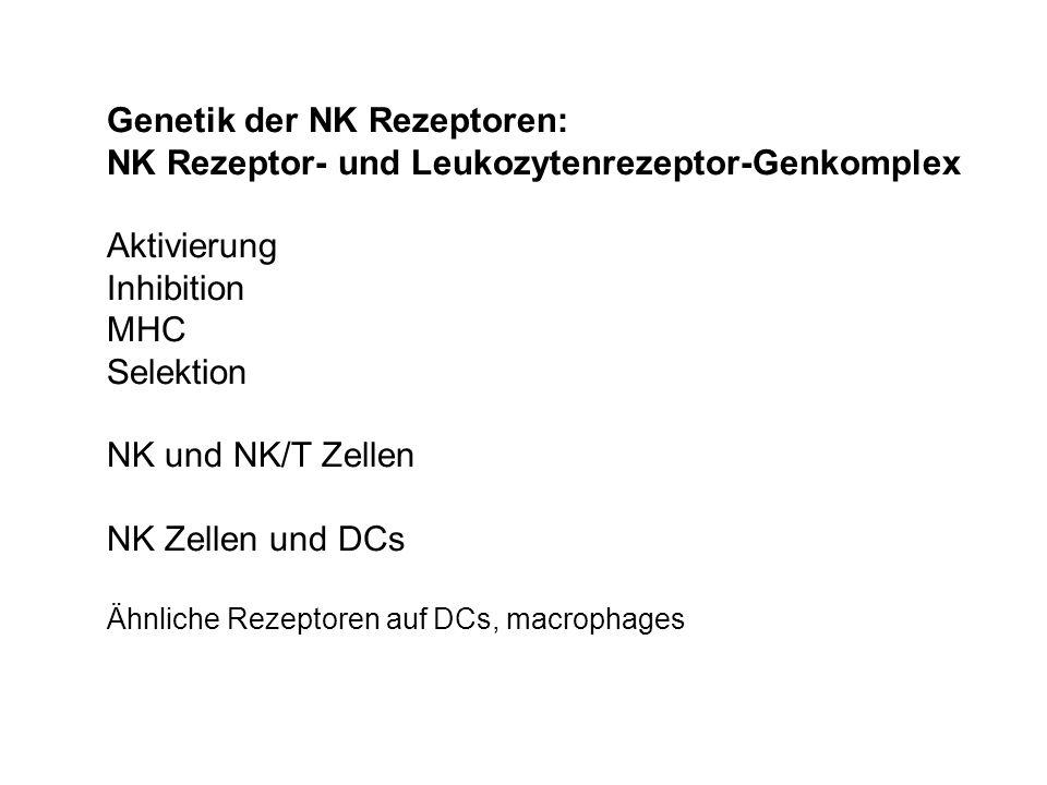 Genetik der NK Rezeptoren: NK Rezeptor- und Leukozytenrezeptor-Genkomplex Aktivierung Inhibition MHC Selektion NK und NK/T Zellen NK Zellen und DCs Äh