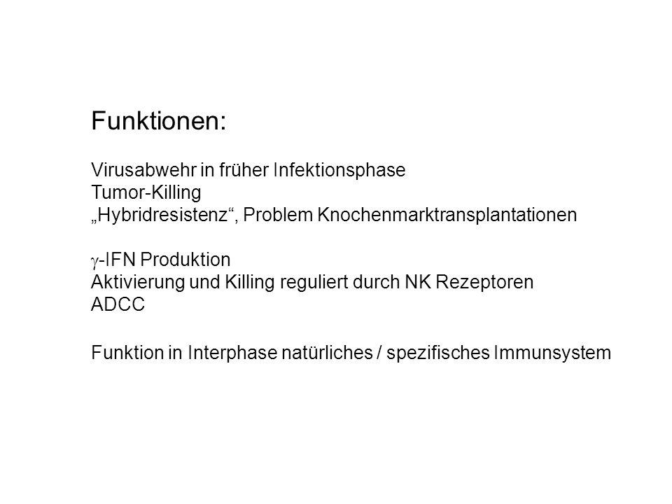 """Funktionen: Virusabwehr in früher Infektionsphase Tumor-Killing """"Hybridresistenz"""", Problem Knochenmarktransplantationen  -IFN Produktion Aktivierung"""