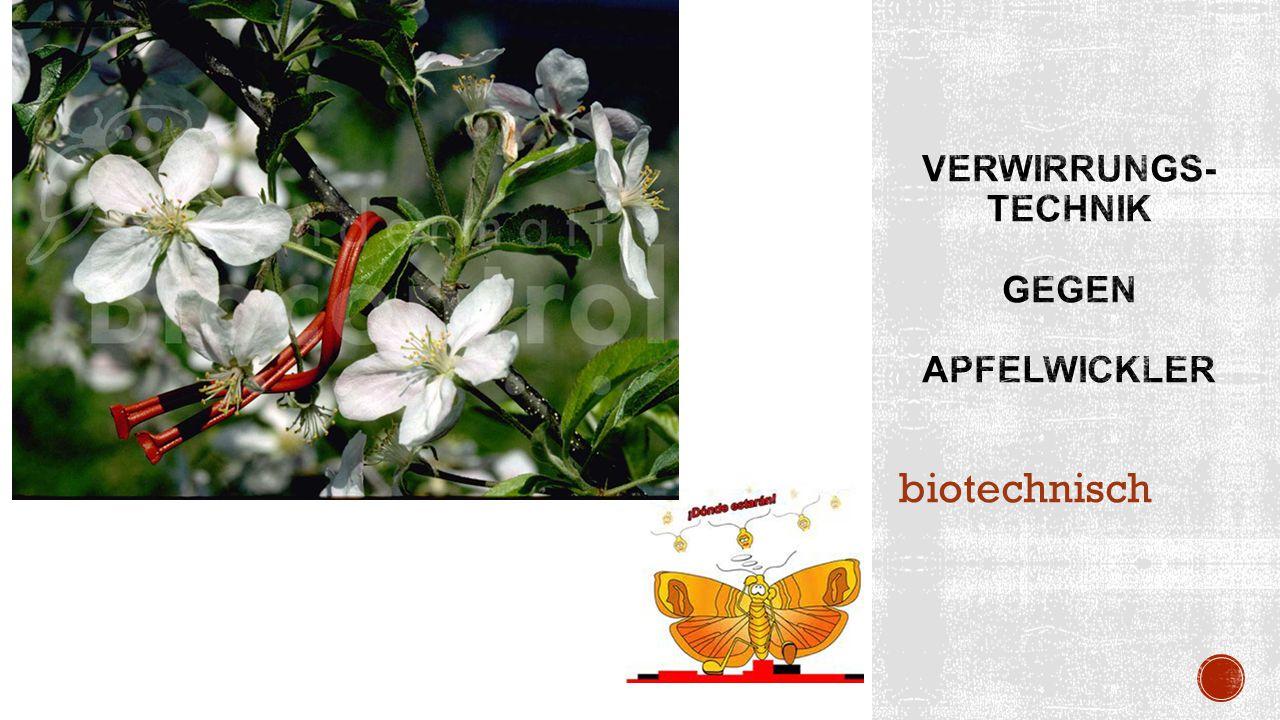 biotechnisch